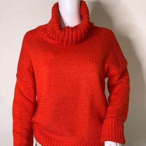 GAP Chunky Turtleneck Sweater EUC